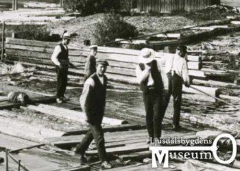 Skogstransportens historia