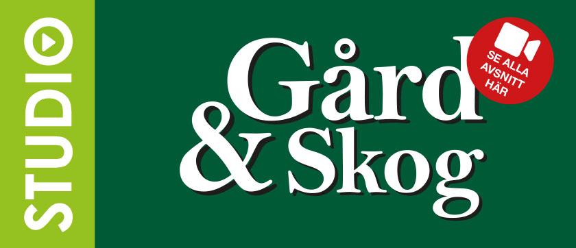 Studio Gård & Skog